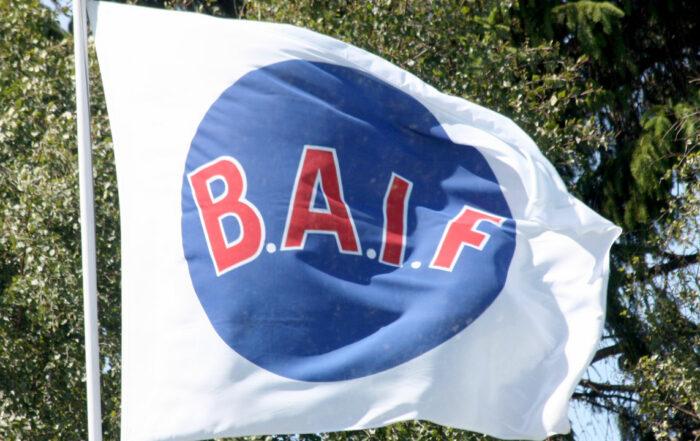 Bergkvara AIF flagga